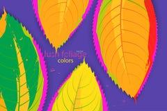 La feuille abstraite colore le vecteur de scène Image libre de droits