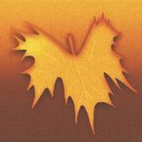 La feuille d'automne a gravé le fond en refief texturisé Papier de thème de chute pour des illustrations Cru regardant la concept illustration de vecteur