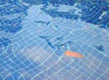 La feuille sèche dans l'eau ondule sur le fond carrelé bleu de piscine photo stock