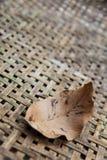 La feuille sèche sur la texture du bambou a tissé le fond Photographie stock