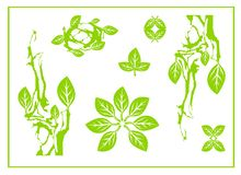 La feuille verte abstraite, station thermale, symbole tribal, yoga, feuille de cercle chantent, conception de nature, thé vert illustration libre de droits
