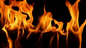 La fiamma arancio di legno del fuoco splendido che brucia al rallentatore si chiude sul colpo del camino satifsying del atmospehe video d archivio