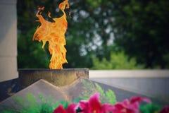 La fiamma eterna brucia in memoria di milioni di soldati sovietici Fotografia Stock