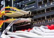 La fibra óptica conecta con el interruptor L3 Imágenes de archivo libres de regalías