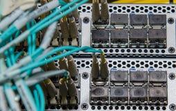 La fibra conecta con el interruptor del SAN Fotos de archivo libres de regalías