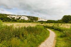 La fiducia della fauna selvatica della terra e la collina ferroviarie di Cliffe nella distanza Fotografia Stock Libera da Diritti