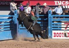 La Fiesta De Los Vaqueros,图森,亚利桑那 免版税图库摄影