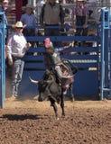 La Fiesta DE Los Vaqueros Junior Rodeo royalty-vrije stock afbeelding