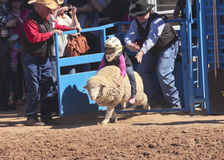 La Fiesta DE Los Vaqueros Junior Rodeo Royalty-vrije Stock Foto