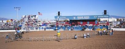 A La Fiesta De Los Vaqueros, Tucson, Arizona Stock Photos