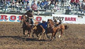 La Fiesta DE Los Vaqueros, Tucson, Arizona royalty-vrije stock afbeeldingen