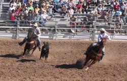 La Fiesta DE Los Vaqueros, Tucson, Arizona stock afbeelding