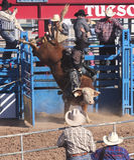 A La Fiesta De Los Vaqueros, Tucson, Arizona Stock Images