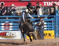 A La Fiesta De Los Vaqueros, Tucson, Arizona Royalty Free Stock Images