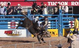 A La Fiesta De Los Vaqueros, Tucson, Arizona Stock Image