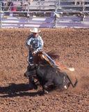 A La Fiesta De Los Vaqueros, Tucson, Arizona Royalty Free Stock Photography