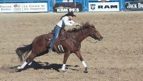 A La Fiesta De Los Vaqueros, Tucson, Arizona Royalty Free Stock Photos