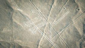 La figura del cane come si vede nel Nasca allinea, Nazca, Perù Fotografia Stock Libera da Diritti