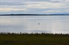 La figura del pescador en medio de la pesca del agua Fotografía de archivo