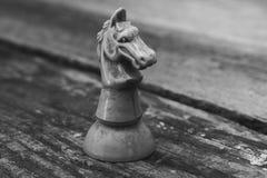 La figura di un cavaliere di scacchi Fotografie Stock