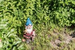 La figura di uno gnomo del giardino nell'erba verde Copi lo spazio Fuoco selettivo fotografia stock libera da diritti