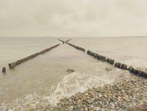 La fila di vecchi mucchi di legno come frangiflutti davanti alla spiaggia pietrosa Fotografia Stock Libera da Diritti