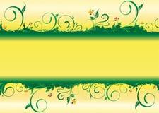 La filiale è verde Immagini Stock Libere da Diritti