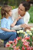 La fille ainsi que la mère s'assied au bâti avec des tulipes Images libres de droits