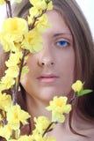 La fille aux yeux bleus avec des couleurs jaunes Photos libres de droits