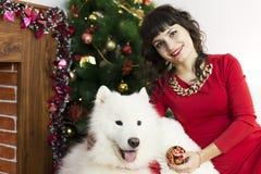 La fille avec le grand chien à l'arbre de fête Photos stock