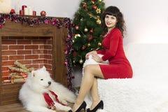 La fille avec le grand chien à l'arbre de fête Photo libre de droits