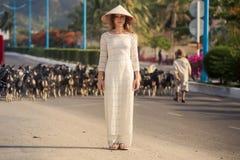 la fille blonde dans le Vietnamien habillent le troupeau de chèvres de montres Images libres de droits