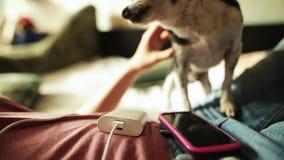 La fille caresse le chien tandis que powerbank chargeant son smartphone banque de vidéos