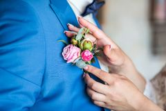 La fille corrige le boutonniere de marié de jeune mariée faire de la publicité de fleurs Weddi Photo libre de droits