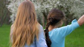La fille d'adolescent fait à amie ses tresses de cheveux relations amicales de mode de vie banque de vidéos