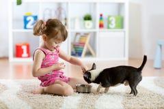 La fille d'enfant observant son chien mange dans le salon Images libres de droits