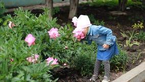 La fille d'enfant renifle l'arome des fleurs de pivoine et éternue Allergies du ` s d'enfants banque de vidéos
