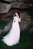 La fille dans la robe en pastel transparente Photo stock
