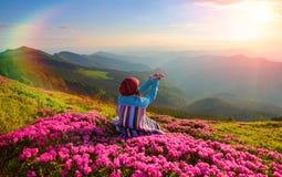 La fille dans le plaid rayé s'assied sur la pelouse parmi les rhododendrons roses observant aux paysages de montagnes Photographie stock libre de droits