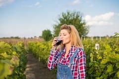 La fille dans le vignoble Photographie stock libre de droits