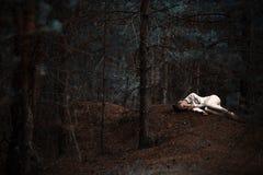 La fille dans les bois image stock