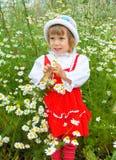 La fille dans les camomiles Photo stock