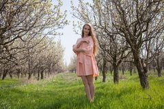 La fille dans la robe de pêche marche par un jardin de floraison Photos stock