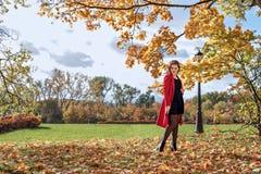 La fille dans un manteau rouge se tient sous les branches jaunes en parc d'automne image stock