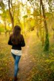 La fille dans un paysage d'automne de parc, marchant à partir de la caméra, sur un sentier piéton par des bois d'une chute aménag images stock