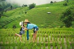 La fille de baiser de mère a apprécié le Mountain View de terrasses de riz Images stock