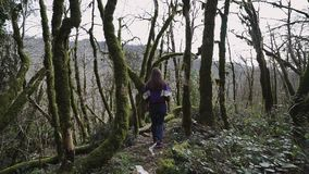 La fille de beauté marche dans la forêt de conte de fées et elle saute par-dessus l'arbre en baisse banque de vidéos