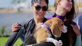 La fille de brune avec des lunettes de soleil tient le chien mignon dans les mains et les supports à côté des amis banque de vidéos