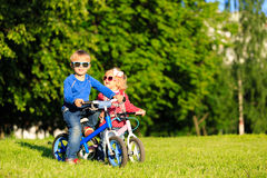 La fille de petit garçon et d'enfant en bas âge sur des vélos en été se garent Photo stock