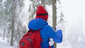 La fille de touristes seule marchant sur une forêt conifére couverte de neige d'hiver dans les montagnes et prend une photo de na banque de vidéos